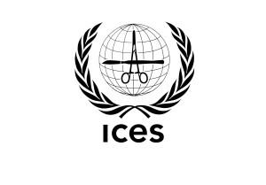 ICESv6