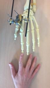 foto fix ex sixtijnse hand